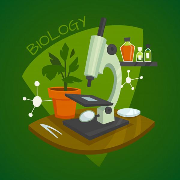 érettségi felkészítő tanfolyam biológia